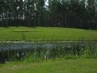 golf-course-6