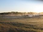 golf-course-morning-fog